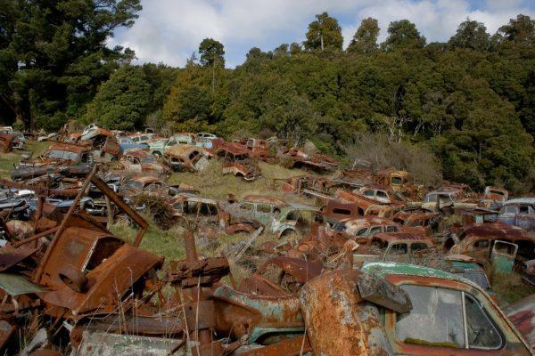 Graveyard of Cars, Horopito, 2007