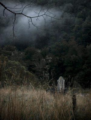 Graveyard, Lyell, 2008
