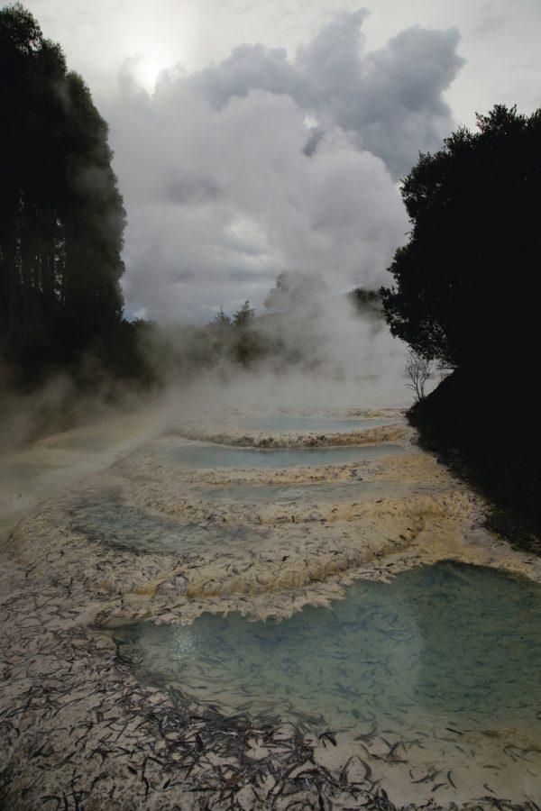 Wairakei Geothermal Pools, Wairakei, 2017