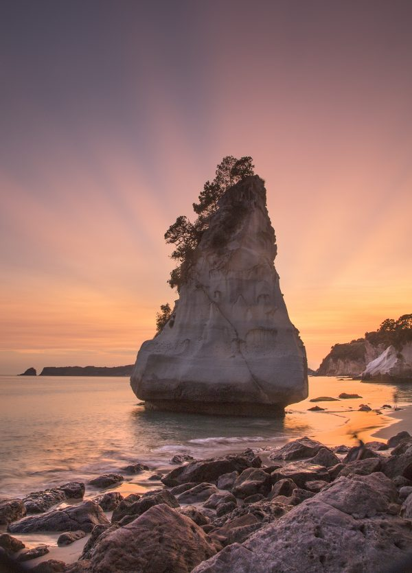 First morning light, Cathedral Cove, 2020